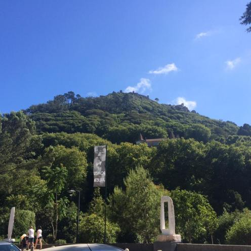 castle-of-the-moors-in-treetops