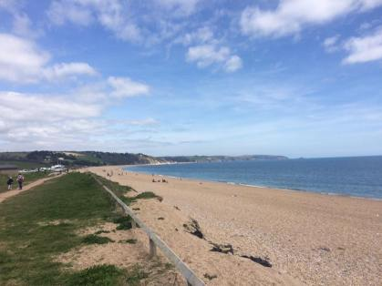 Picture 17 - Slapton Sands