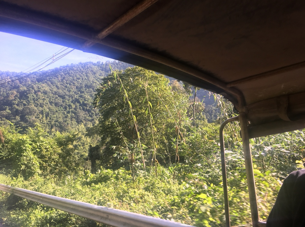 Jeep photo 1